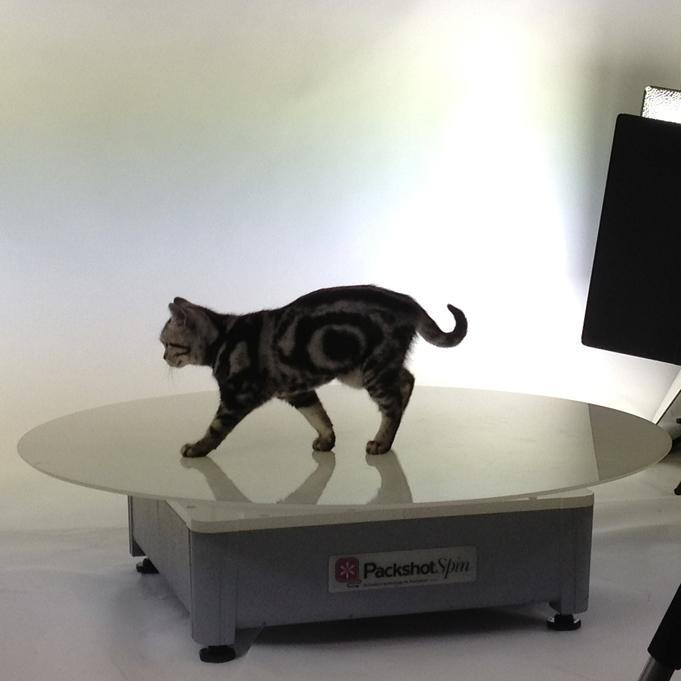 360 animations in photo studio